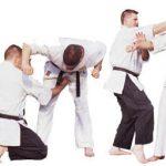 48 techniques of okinawa karate (part II)