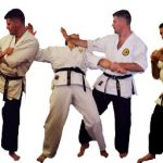 48 techniques of okinawa karate (part III)
