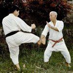Interview with Hohan Soken, Mutsumura's grandson – part I