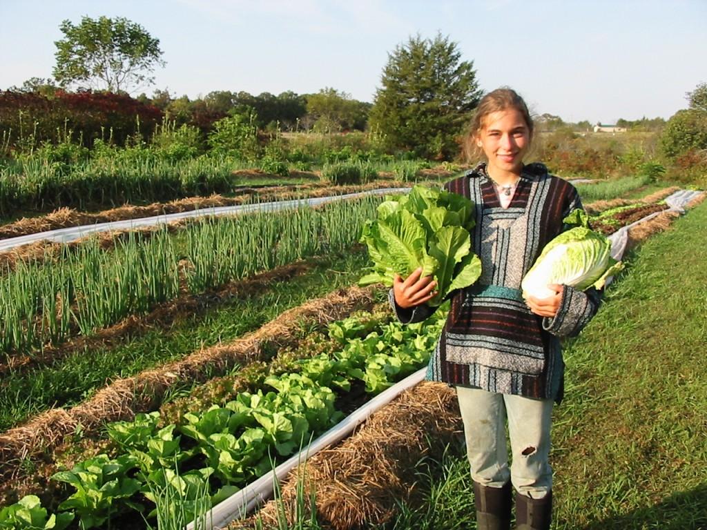 мала-органска-фарма