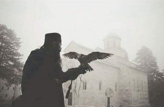 Manastir Dečani soko