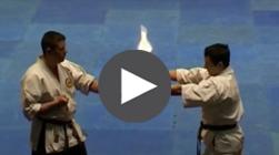 karate shorin rye